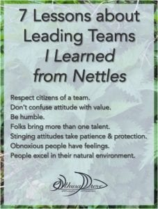 Leading Teams Lessons from Nettles