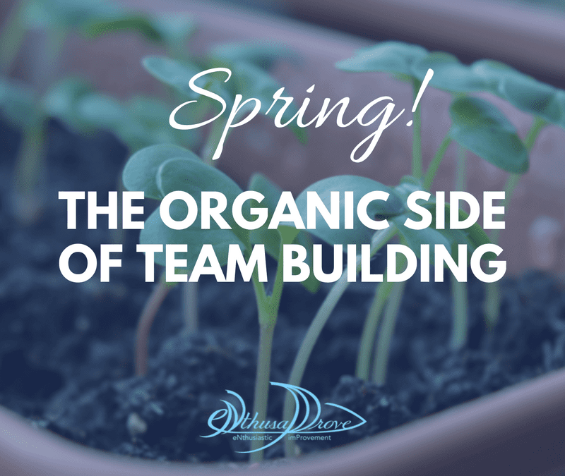 Spring! The Organic Side of Team Building