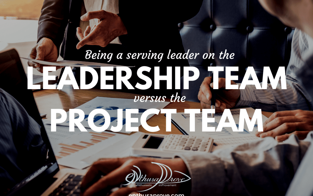 A Serving Leader: Balancing The Role In Leadership Teams & Project Teams